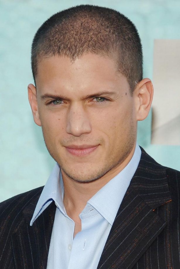 Wentworth-Miller hot